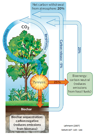 Carbon Cycle with Pyrolysis